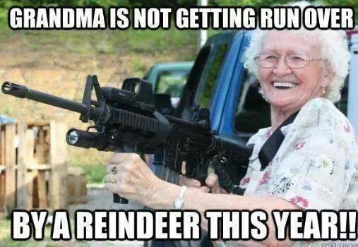 Funny Memes For Grandmas : Grandma is not getting run over this year a fun